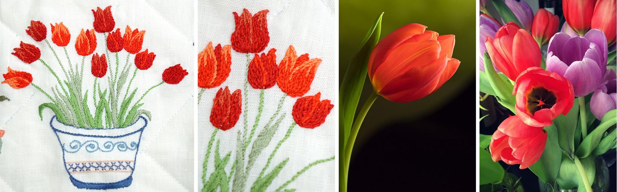 post_tulipa1
